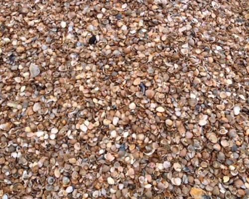 Zand archieven pekaar bestratingsmaterialen vlake zeeland - Maak een grind steegje ...